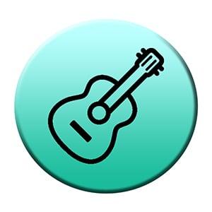 Guitar dealers in india