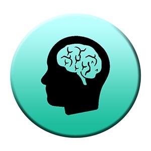 Neurology dealers in india